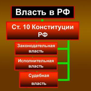 Органы власти Нижних Сергов