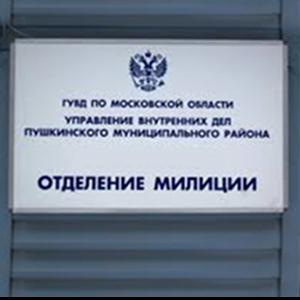 Отделения полиции Нижних Сергов