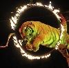 Цирки в Нижних Сергах