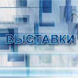 Выставки Нижних Сергов